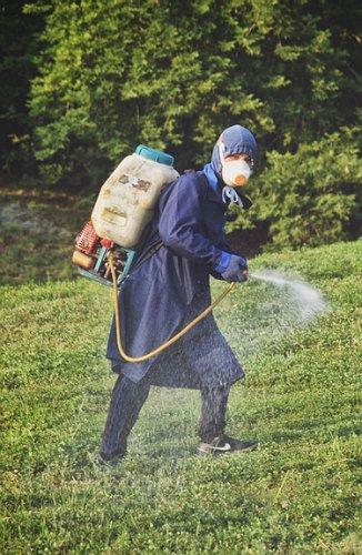 Комар носа не подточит?