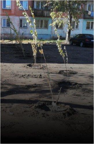 Жильцы улицы Короленко благодарят депутата своего округа