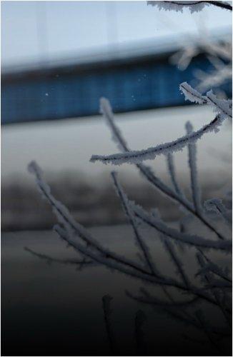Из-за сильных морозов в Павлодаре создали оперативный штаб реагирования