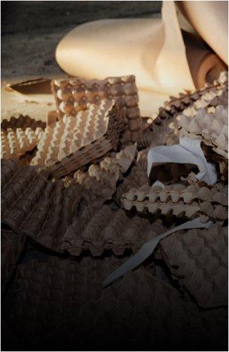 Акимам районов и сел поручили оформить свалки в соответствии с законодательством