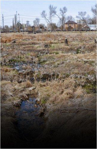 В Павлодаре рассматривают варианты восстановления сквера Металлургов