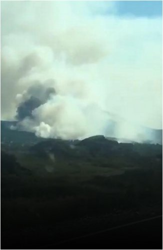 Пожар в Баянауле не могут потушить уже несколько дней