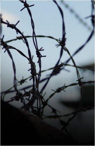 14 человек осудили в Павлодаре за пытки в колонии АП-162/3