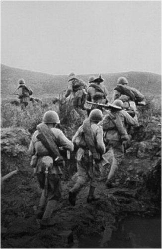 Родственников пропавшего без вести во время Великой Отечественной войны солдата разыскивают поисковики