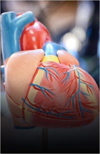 Открытие инсультного центра на базе кардиологического рассматривают в Павлодаре