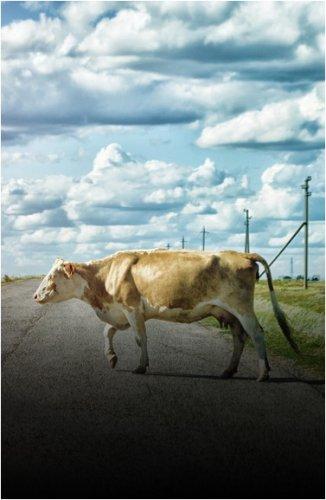 Бесхозно гуляющий скот, как причину ДТП, обсудили полицейские с павлодарцами