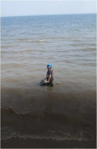 Конкурс на пользование солеными озерами проводят чиновники Павлодарской области