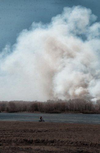 В Павлодаре горит пойма Иртыша