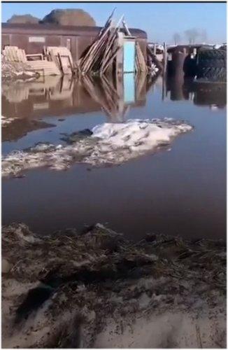 ДЧС узнало о паводках через паблики, пока люди не могли выбраться из села
