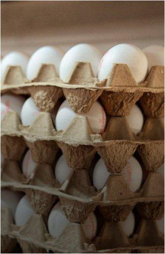 На прилавках Павлодара пресекли продажу яиц по спекулятивной цене