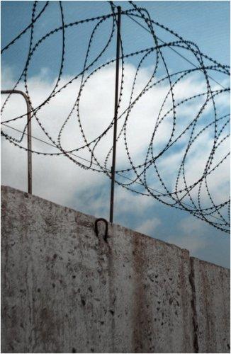 Осужденный за убийство избил до смерти другого заключенного