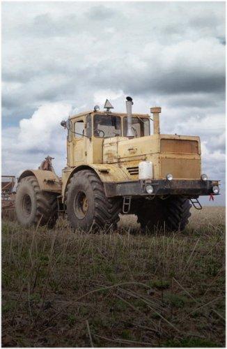 Полностью обеспечивать себя сельхозпродукцией планирует район в Павлодарской области