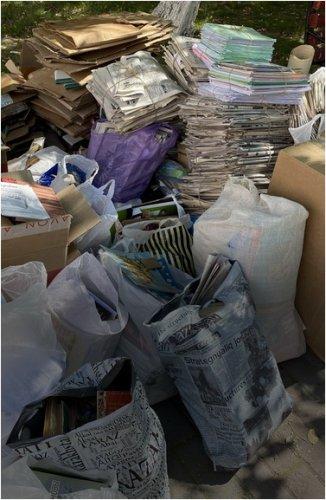 Собирать бумагу и картон ради помощи животным предлагают школьникам и студентам павлодарские общественники